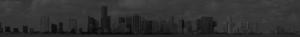Miami City Skyline